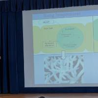 3MT Presenter #9 Remarks